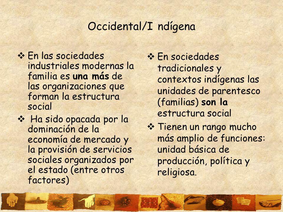 Occidental/I ndígena En las sociedades industriales modernas la familia es una más de las organizaciones que forman la estructura social.