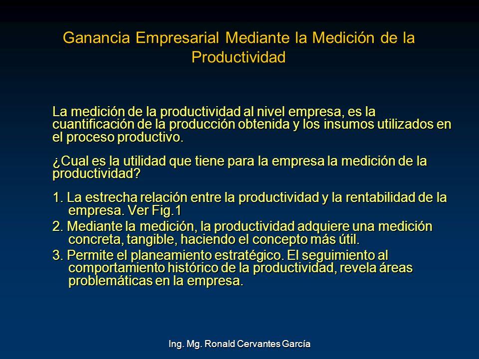 Ganancia Empresarial Mediante la Medición de la Productividad