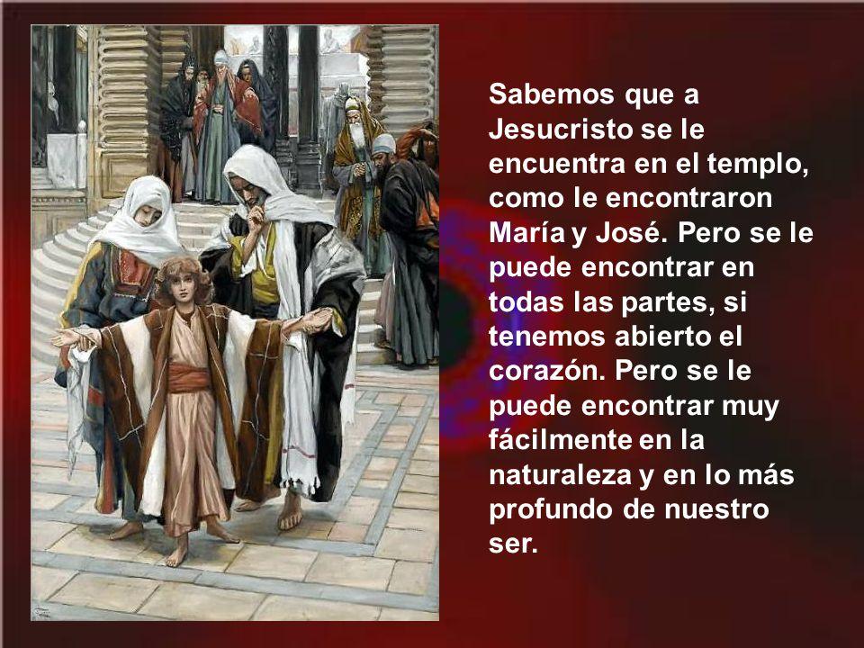 Sabemos que a Jesucristo se le encuentra en el templo, como le encontraron María y José.