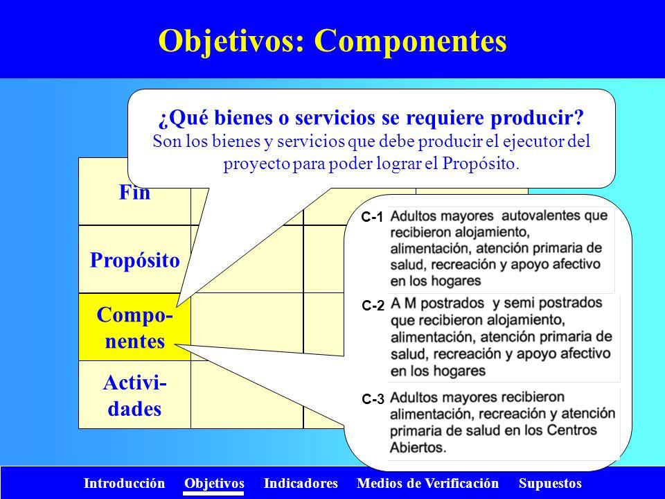 Objetivos: Componentes