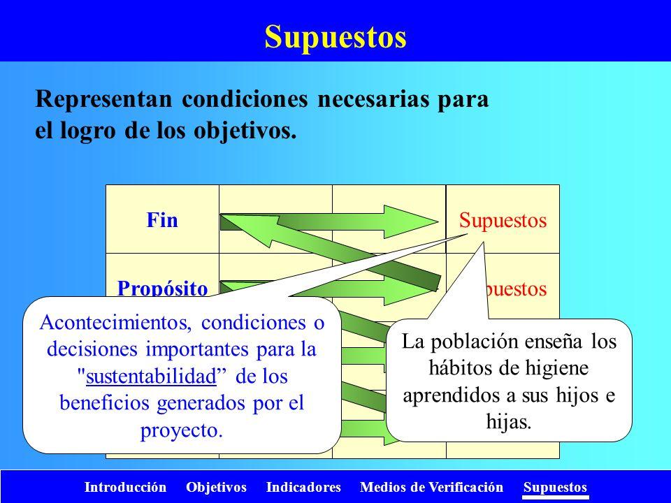 SupuestosRepresentan condiciones necesarias para el logro de los objetivos. Supuestos. Fin. Propósito.