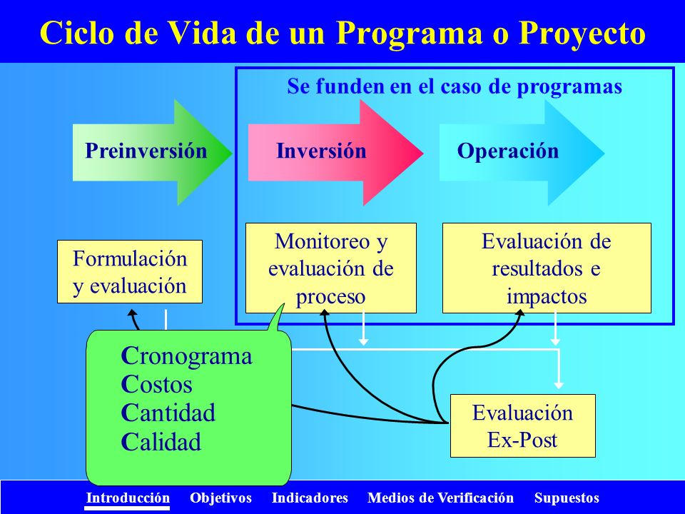 Ciclo de Vida de un Programa o Proyecto