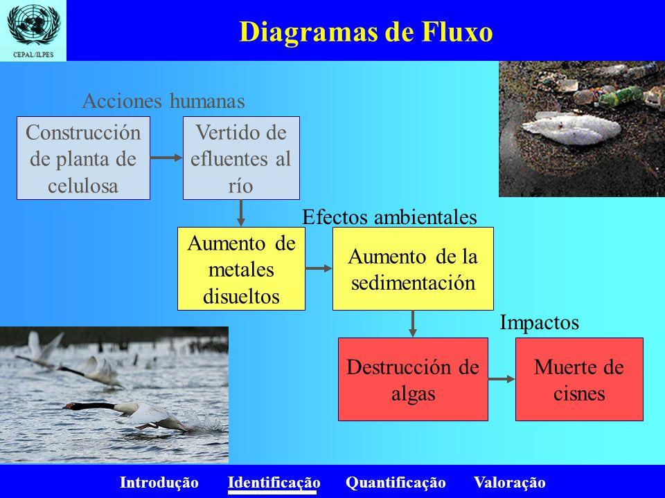 Diagramas de Fluxo Acciones humanas Construcción de planta de celulosa