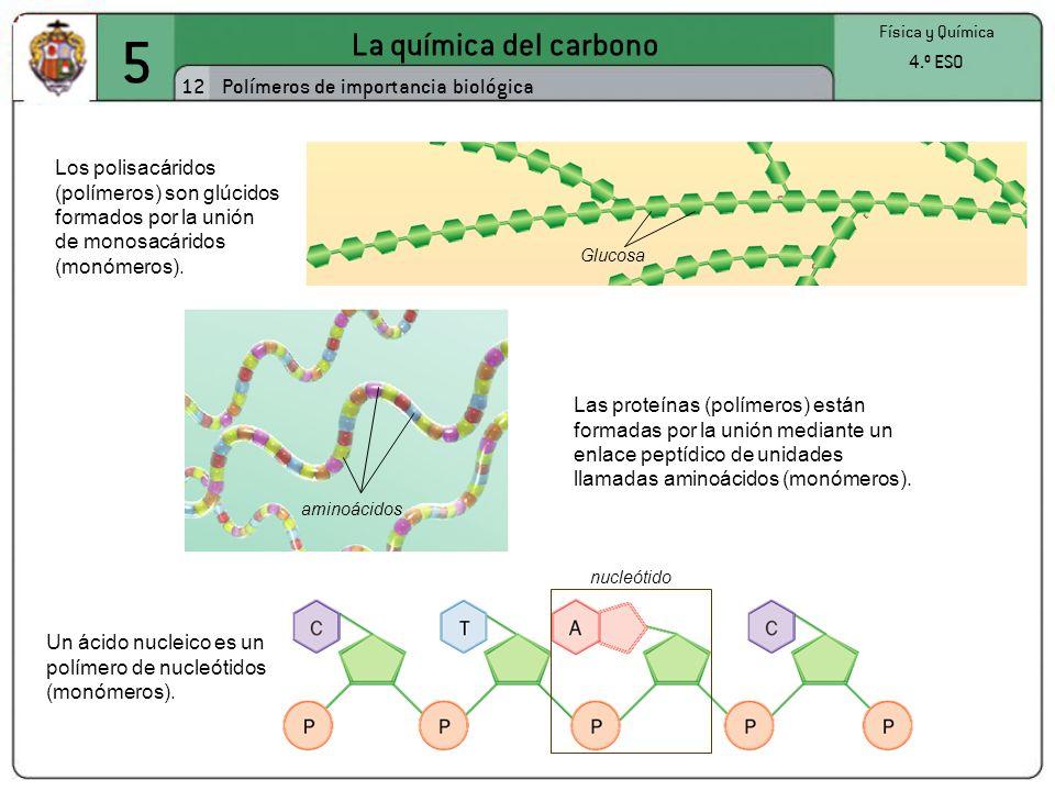 5 La química del carbono 12 Polímeros de importancia biológica 4.º ESO