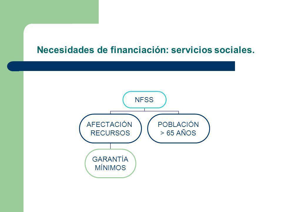 Necesidades de financiación: servicios sociales.