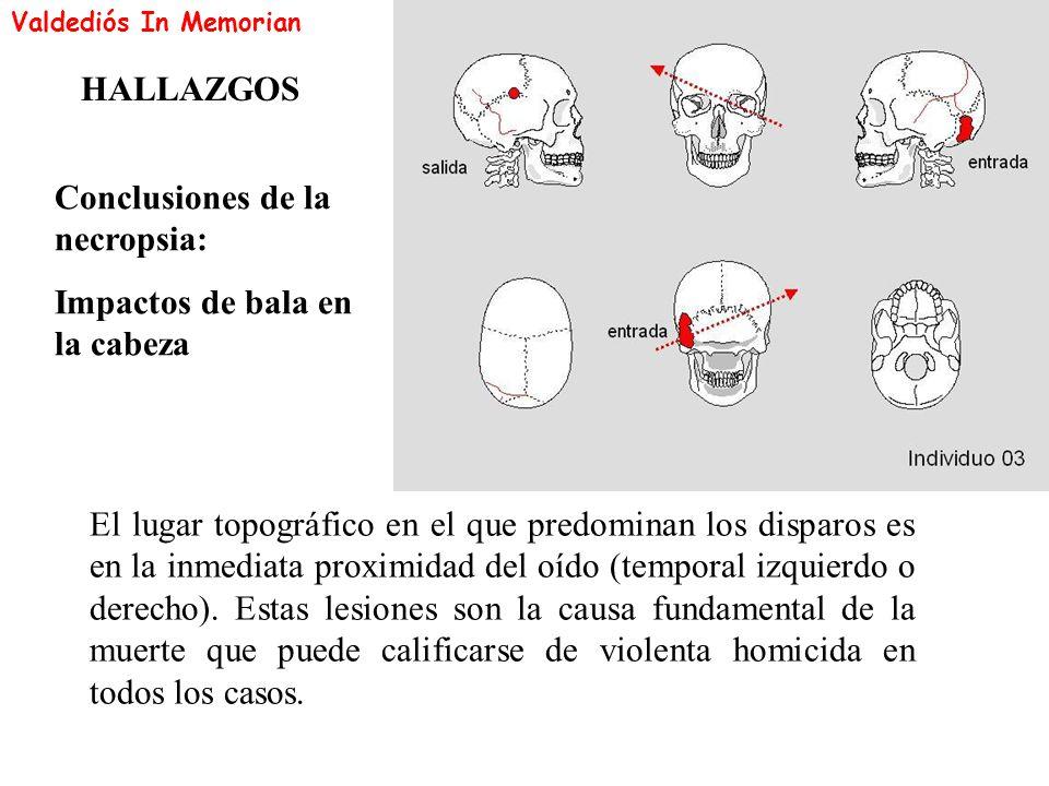 Conclusiones de la necropsia: Impactos de bala en la cabeza