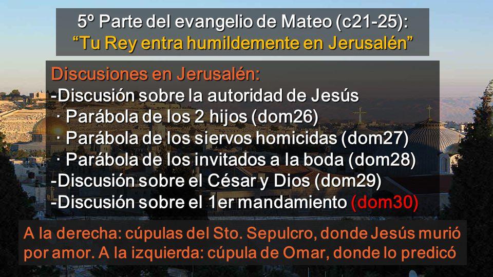 5º Parte del evangelio de Mateo (c21-25): Tu Rey entra humildemente en Jerusalén
