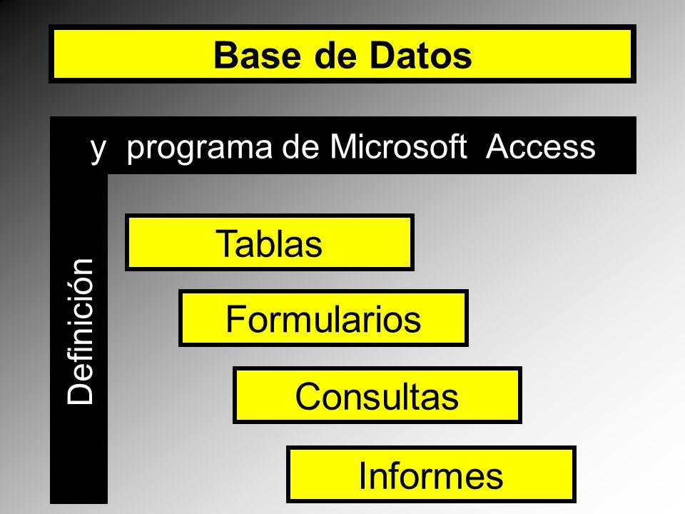 y programa de Microsoft Access