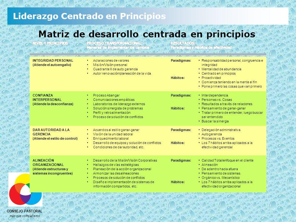 Matriz de desarrollo centrada en principios