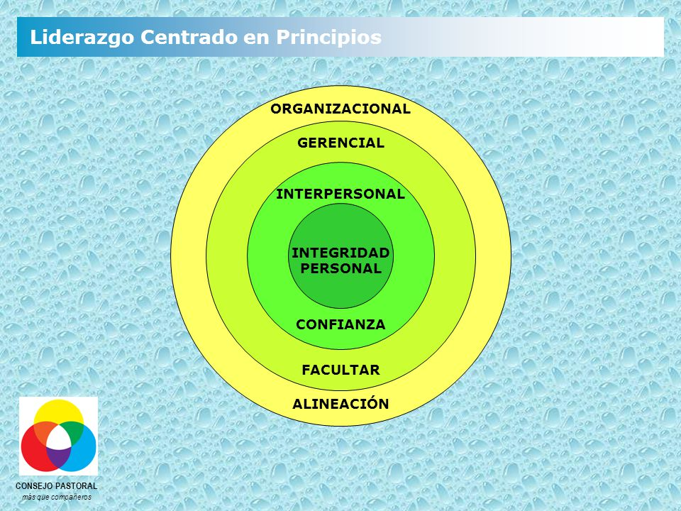 ORGANIZACIONAL GERENCIAL INTERPERSONAL INTEGRIDAD PERSONAL CONFIANZA FACULTAR ALINEACIÓN