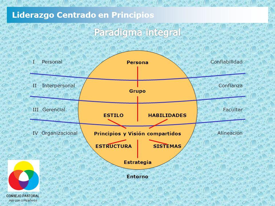 Persona Grupo Principios y Visión compartidos Estrategia Entorno