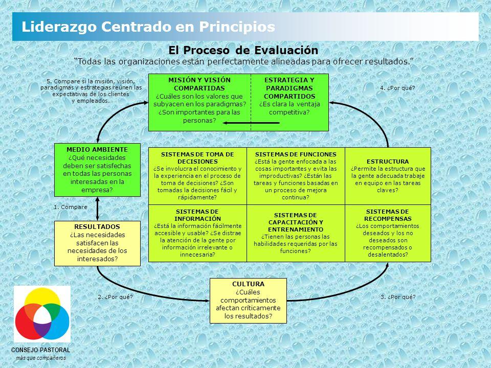 El Proceso de Evaluación Todas las organizaciones están perfectamente alineadas para ofrecer resultados.