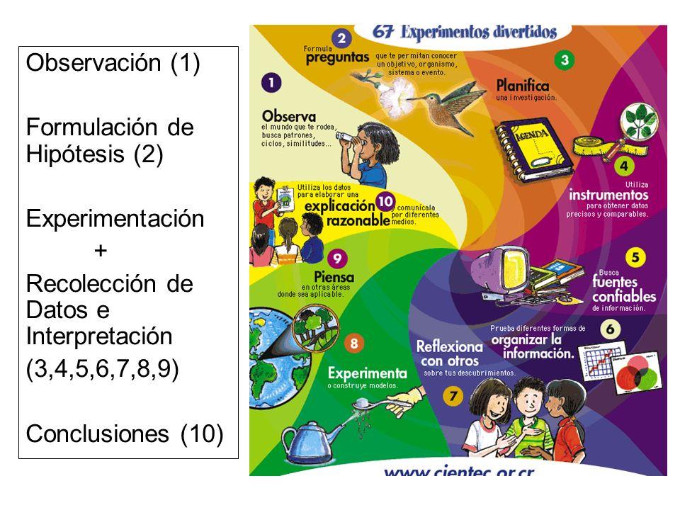 Observación (1)Formulación de Hipótesis (2) Experimentación. + Recolección de Datos e Interpretación.