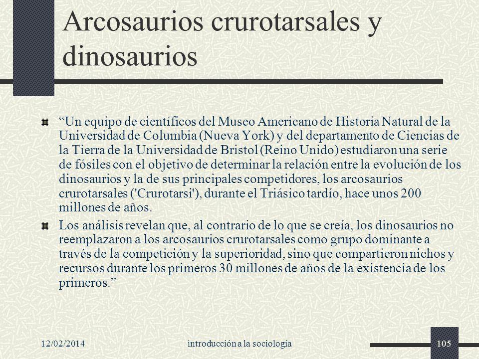Arcosaurios crurotarsales y dinosaurios