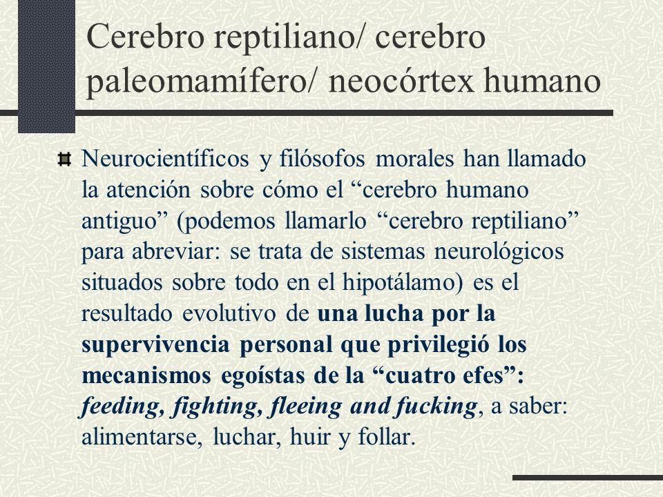 Cerebro reptiliano/ cerebro paleomamífero/ neocórtex humano