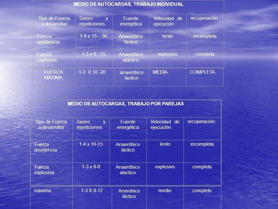 MEDIO DE AUTOCARGAS, TRABAJO INDIVIDUAL Tipo de Fuerza a desarrollar