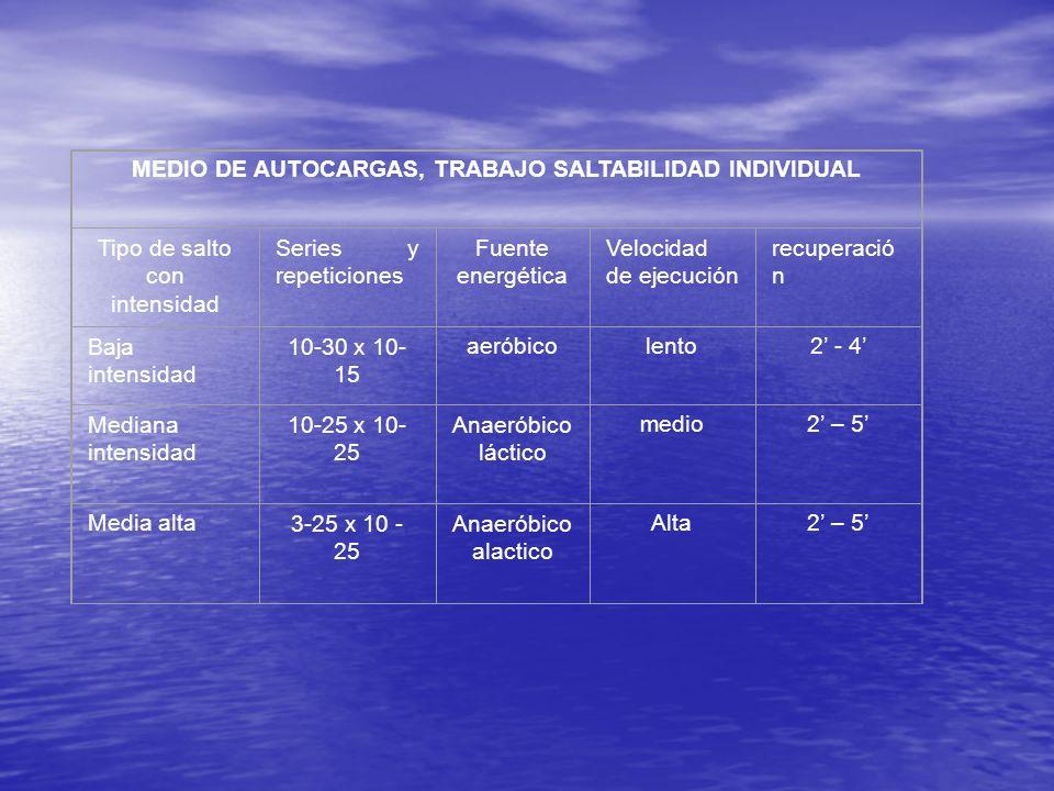 MEDIO DE AUTOCARGAS, TRABAJO SALTABILIDAD INDIVIDUAL
