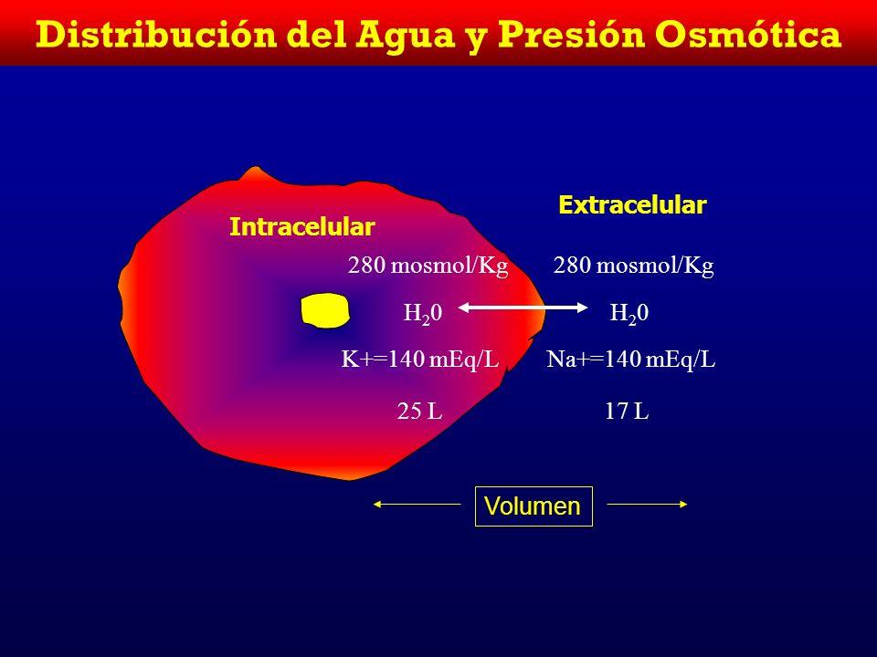 Distribución del Agua y Presión Osmótica