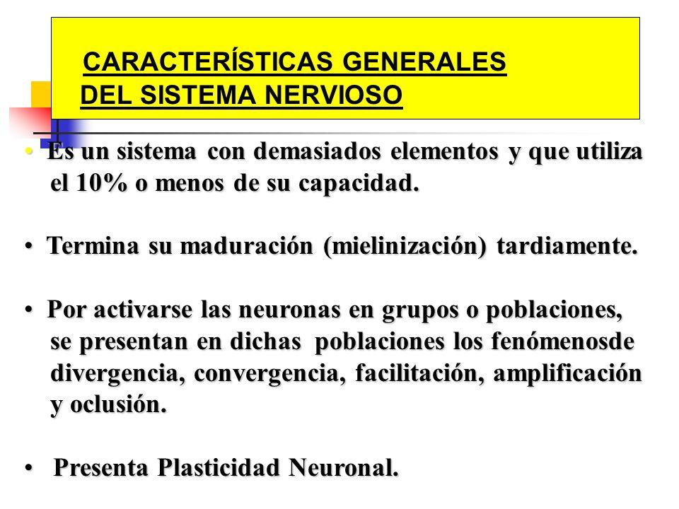 CARACTERÍSTICAS GENERALES DEL SISTEMA NERVIOSO