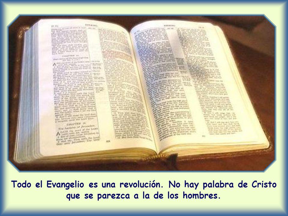 Todo el Evangelio es una revolución