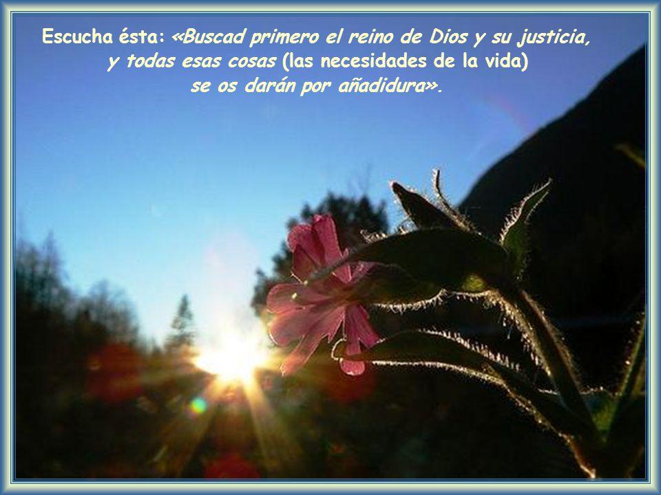 Escucha ésta: «Buscad primero el reino de Dios y su justicia,