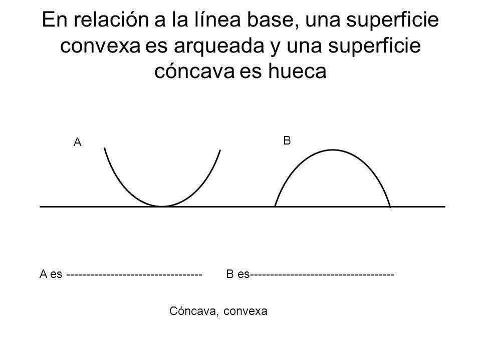 En relación a la línea base, una superficie convexa es arqueada y una superficie cóncava es hueca