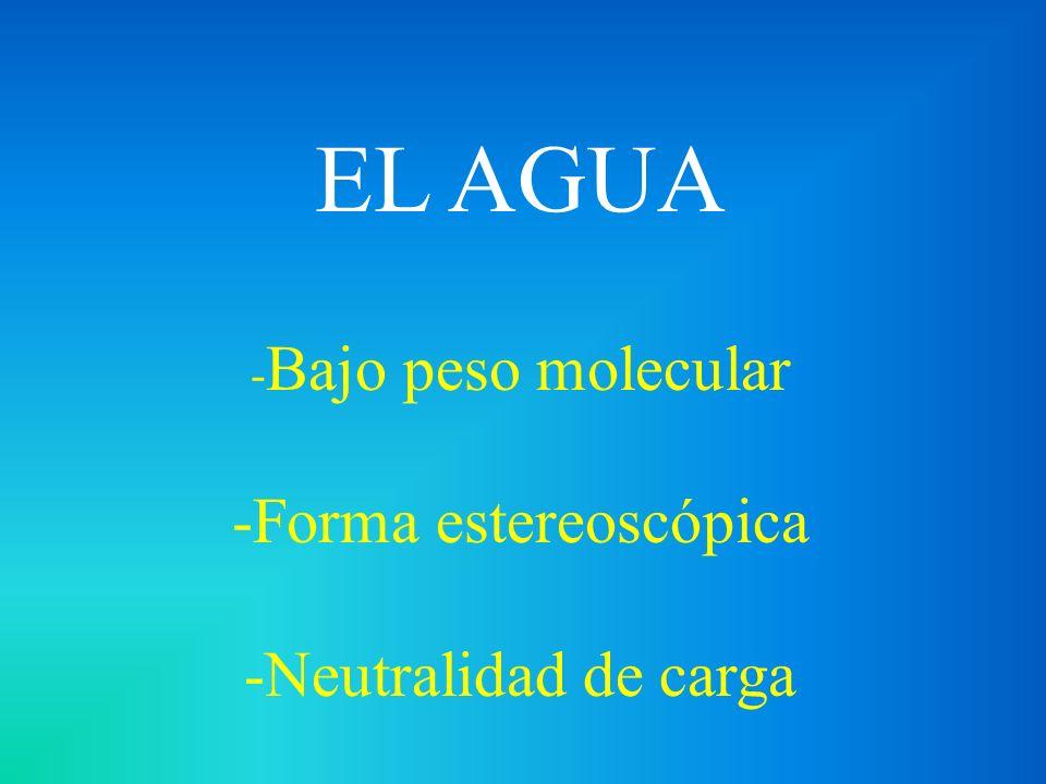 EL AGUA -Bajo peso molecular -Forma estereoscópica -Neutralidad de carga