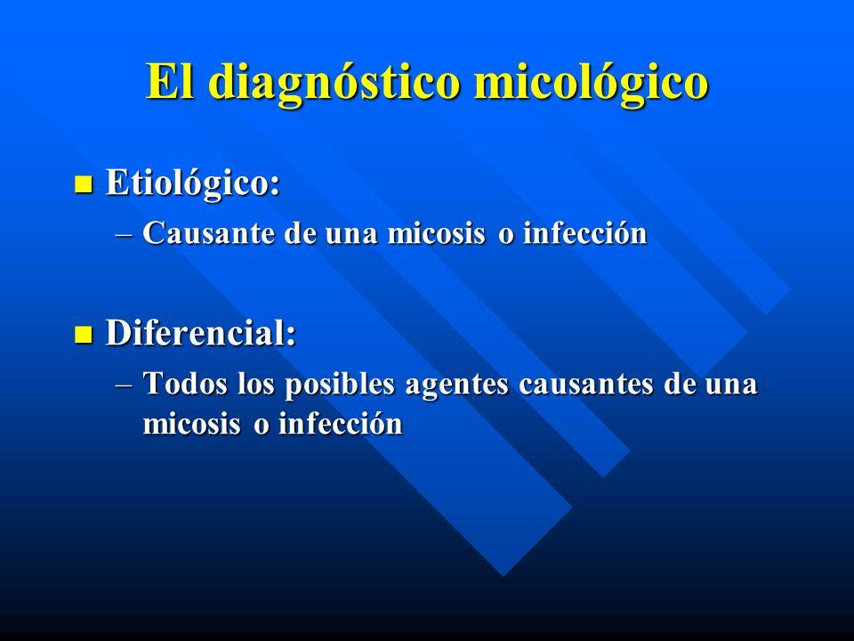 El diagnóstico micológico