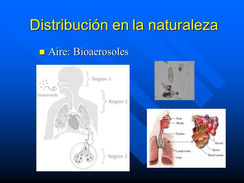 Distribución en la naturaleza