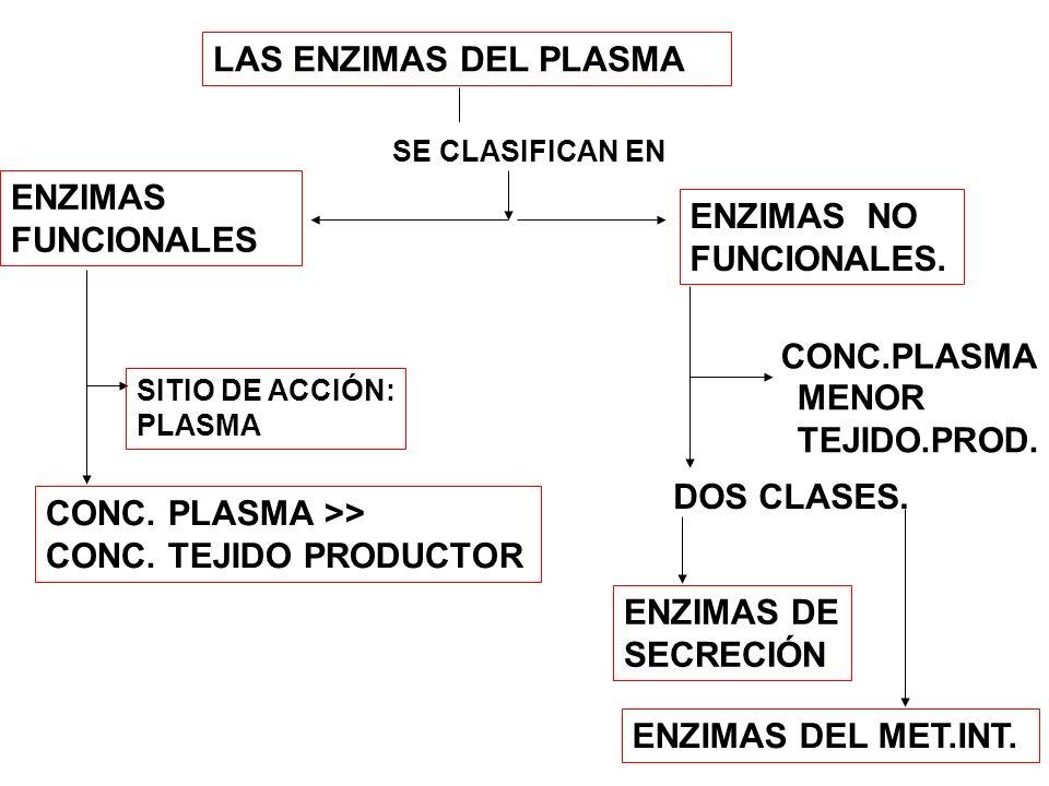 LAS ENZIMAS DEL PLASMA ENZIMAS FUNCIONALES ENZIMAS NO FUNCIONALES.