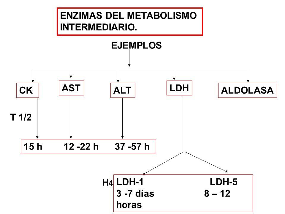 ENZIMAS DEL METABOLISMO