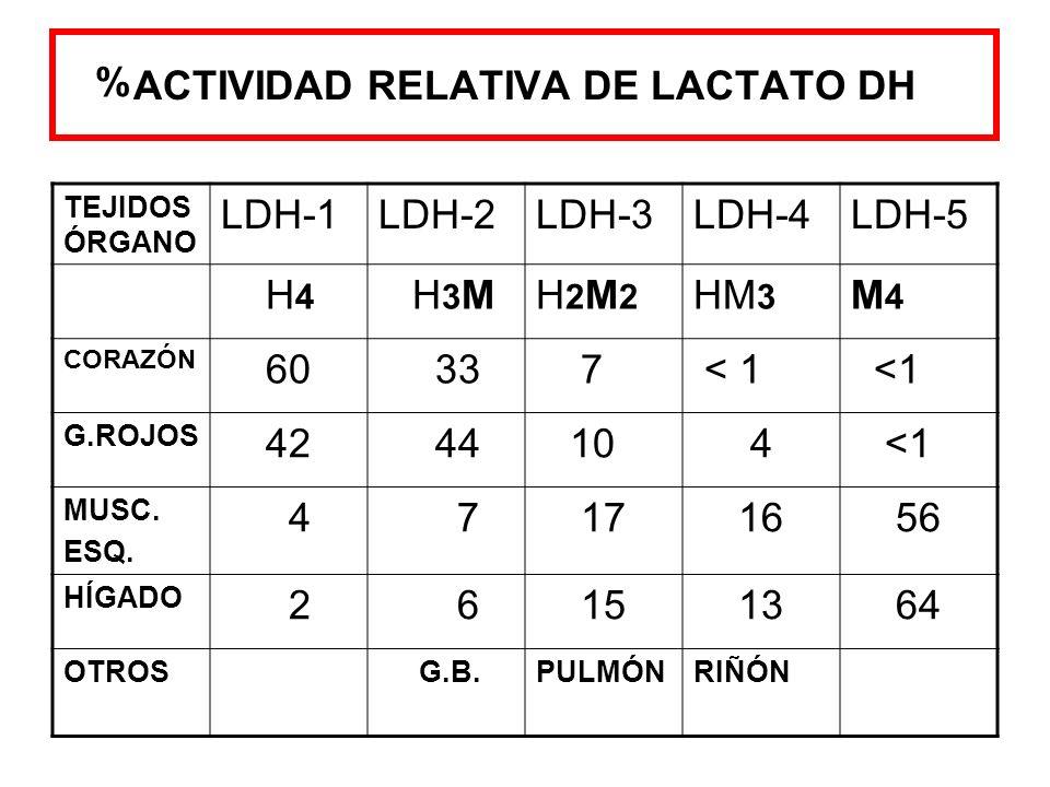 ACTIVIDAD RELATIVA DE LACTATO DH