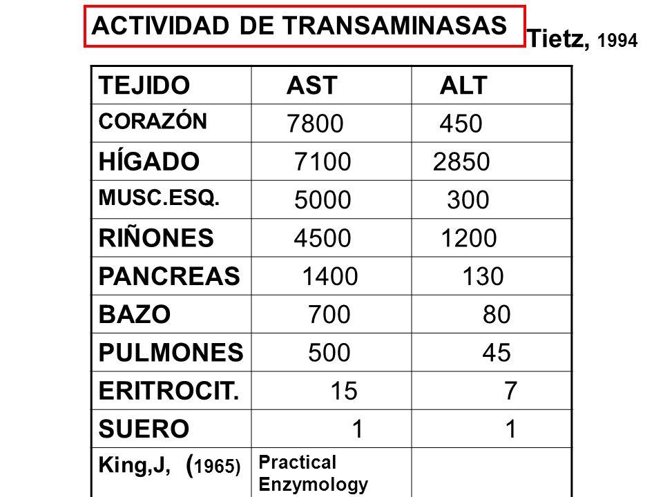 ACTIVIDAD DE TRANSAMINASAS Tietz, 1994 TEJIDO AST ALT 7800 450 HÍGADO