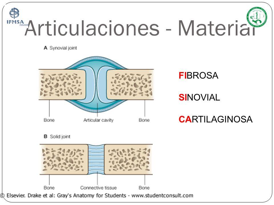 Articulaciones - Material