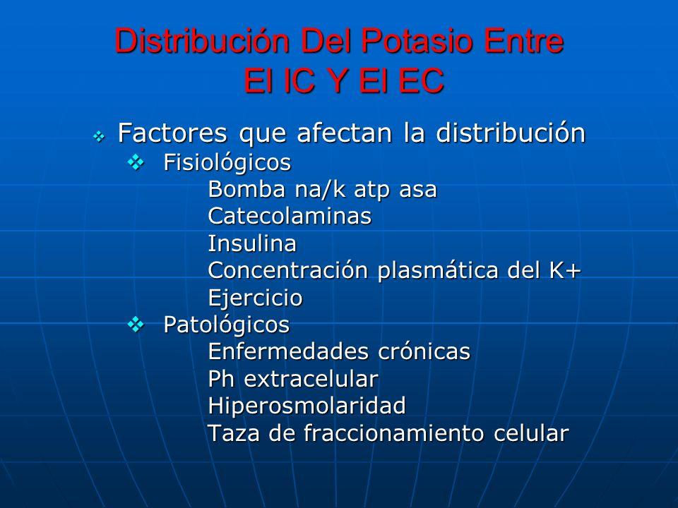 Distribución Del Potasio Entre El IC Y El EC