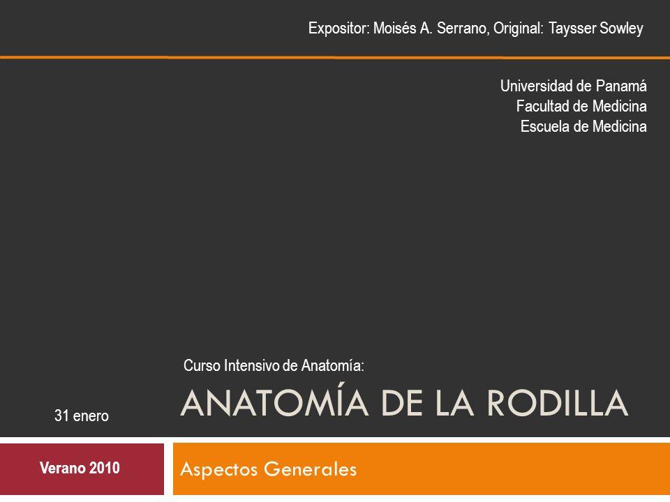 ANATOMÍA DE LA RODILLA Aspectos Generales - ppt video online descargar