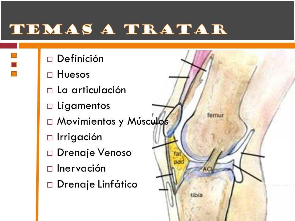 DefiniciónHuesos. La articulación. Ligamentos. Movimientos y Músculos. Irrigación. Drenaje Venoso. Inervación.
