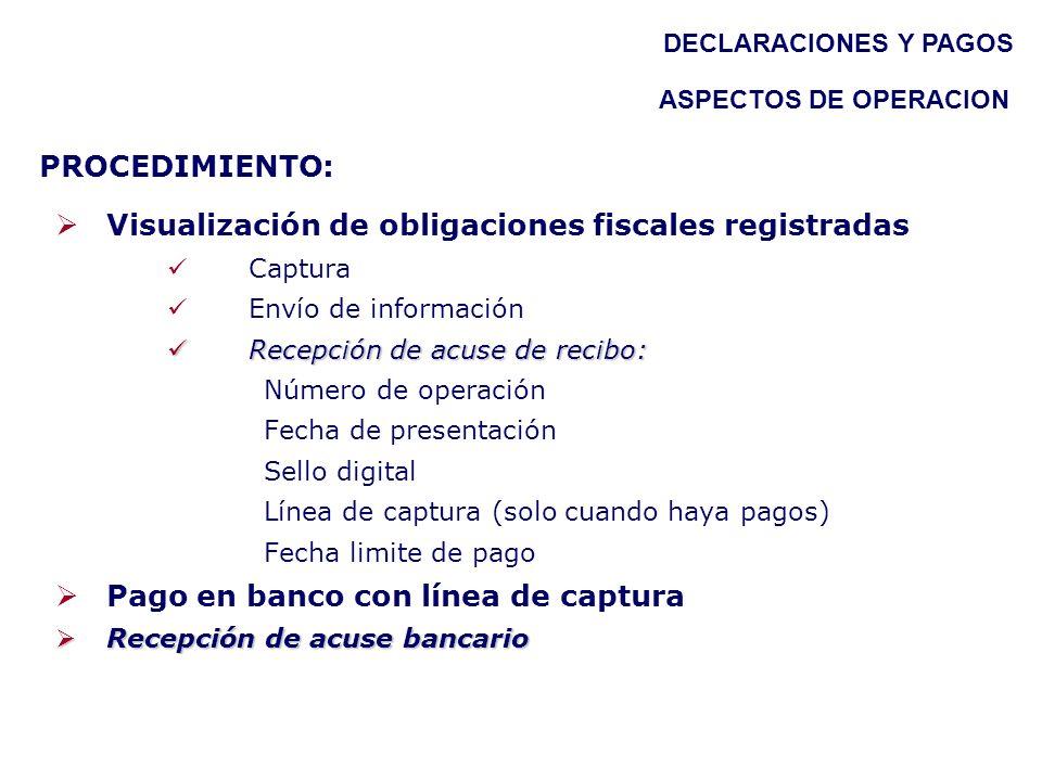 Visualización de obligaciones fiscales registradas