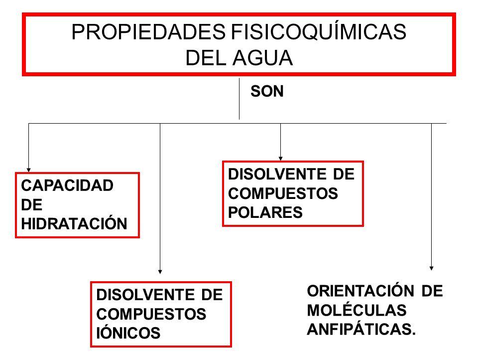 PROPIEDADES FISICOQUÍMICAS DEL AGUA