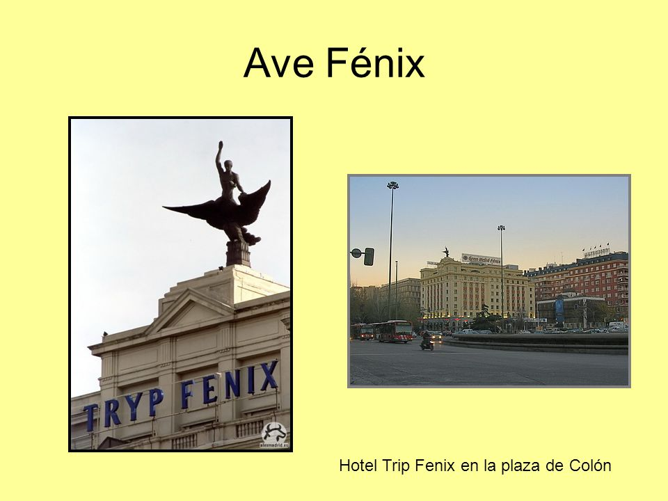Ave Fénix Hotel Trip Fenix en la plaza de Colón