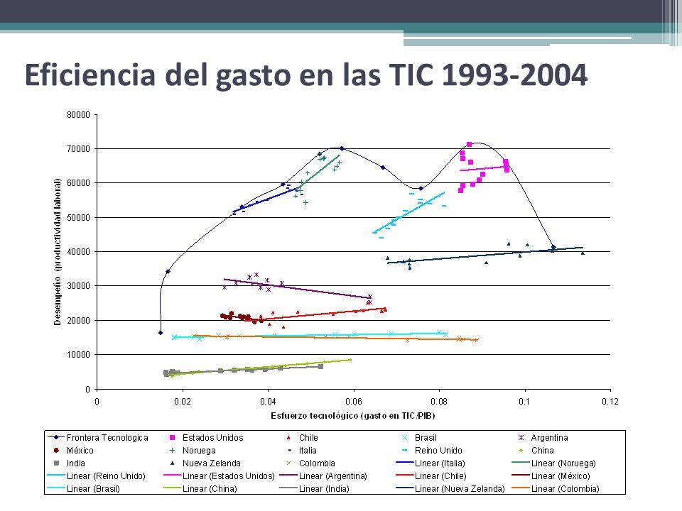 Eficiencia del gasto en las TIC 1993-2004