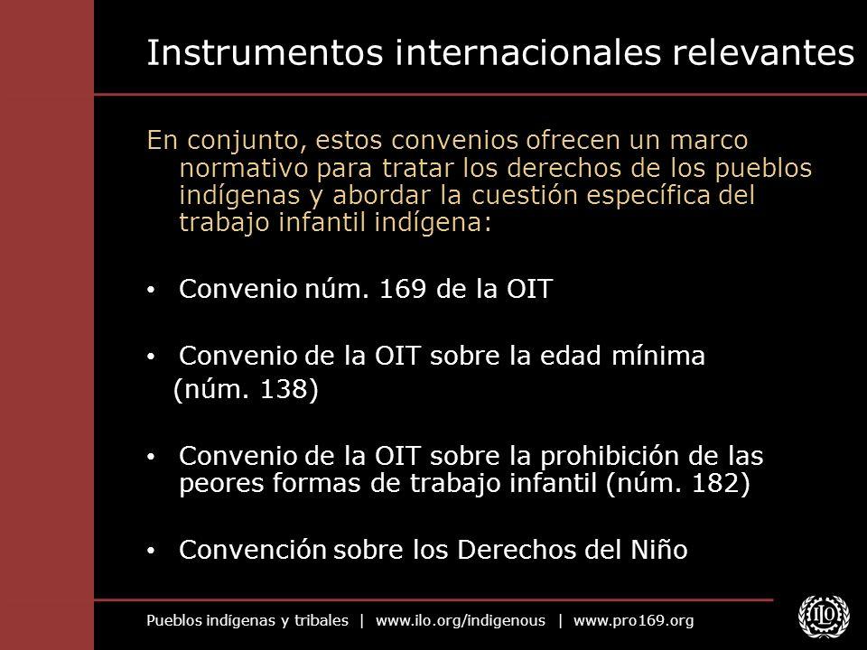 Instrumentos internacionales relevantes