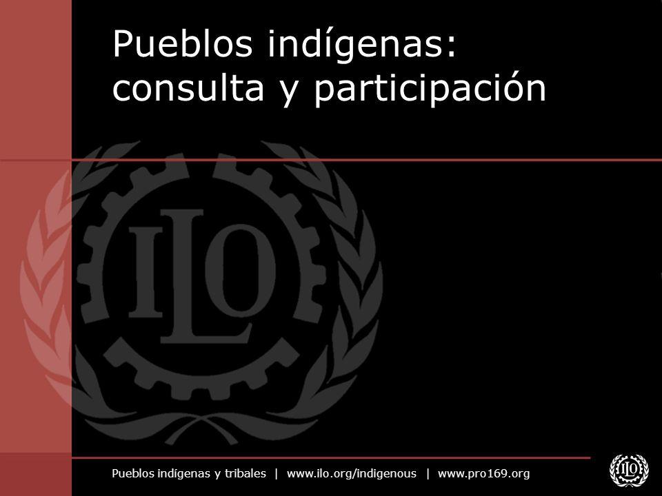Pueblos indígenas: consulta y participación
