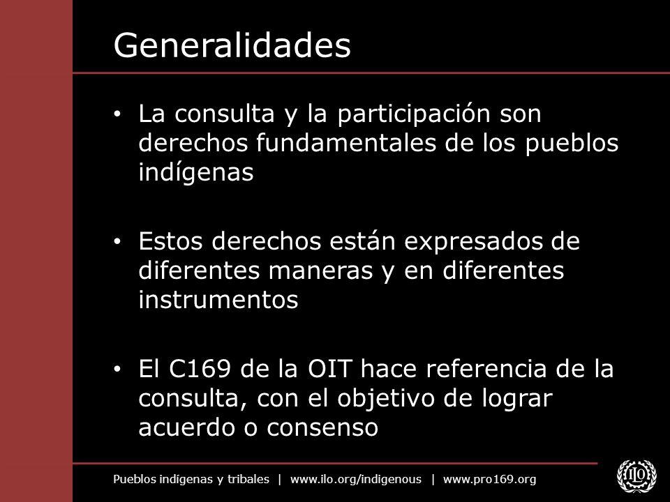 Generalidades La consulta y la participación son derechos fundamentales de los pueblos indígenas.