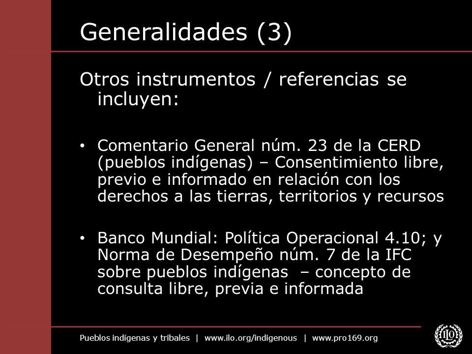 Generalidades (3) Otros instrumentos / referencias se incluyen: