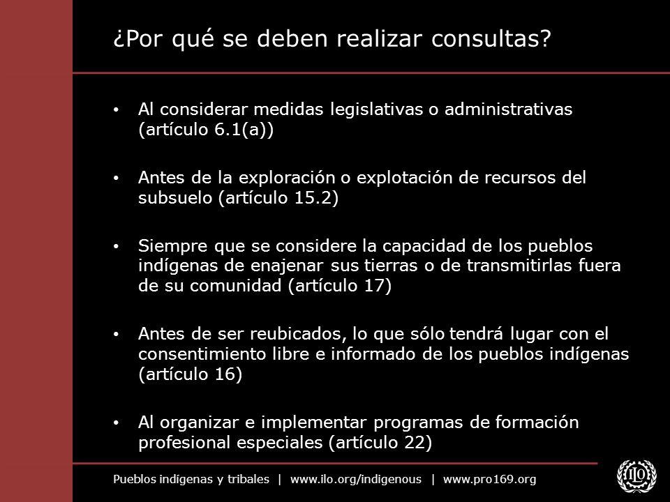 ¿Por qué se deben realizar consultas