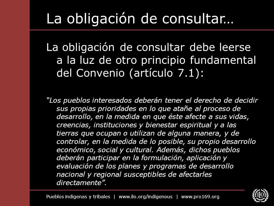 La obligación de consultar…