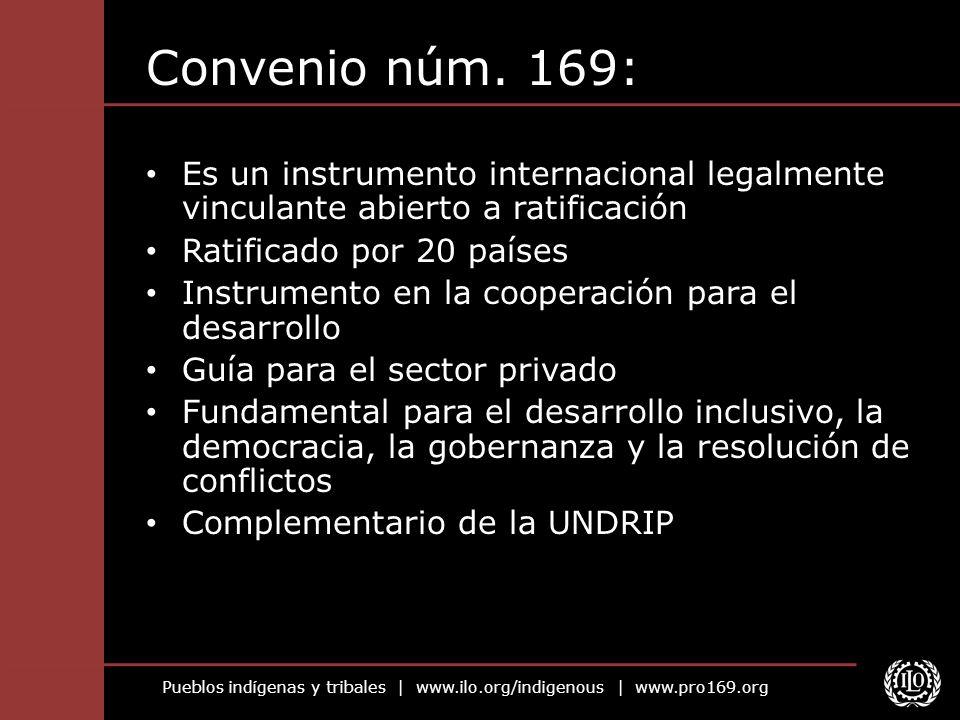 Convenio núm. 169: Es un instrumento internacional legalmente vinculante abierto a ratificación. Ratificado por 20 países.
