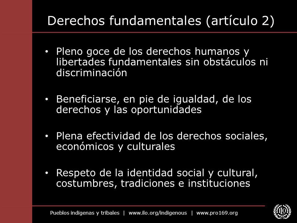 Derechos fundamentales (artículo 2)