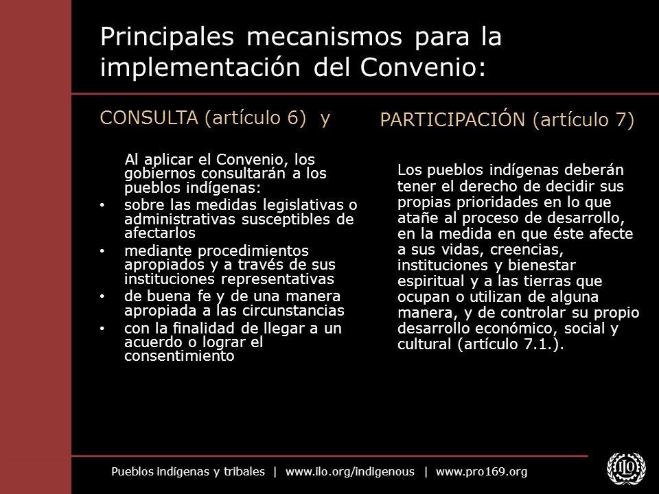 Principales mecanismos para la implementación del Convenio: